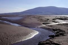 Caerlaverock National Nature Reserve