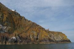 Mull of Galloway RSPB nature reserve