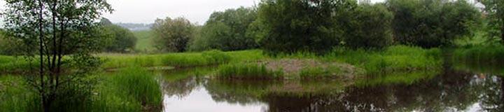Eskrigg Reserve, Lockerbie