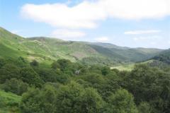 Buchan and Glenhead Woods