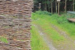 Bird Feeding Station, Langholm moor