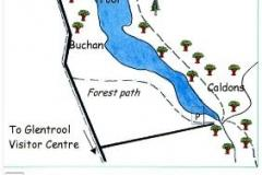 Buchan and Glenhead Woods Site Map
