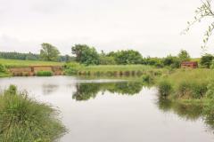 Applegarthtown Wildlife Sanctuary, Near Lochmaben