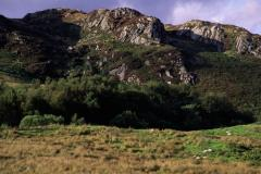 Cairnsmore of Fleet National Nature Reserve