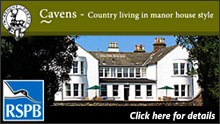Special Offers at Cavens