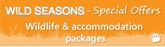 Wildlife and accommodation special offers
